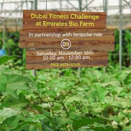 Fitness Challenge at the Farm- Nov 16th