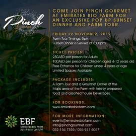 Pinch Gourmet Pop up - Nov 22nd- Kids (1-4)