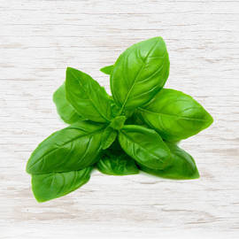 Organic Basil - Bunch