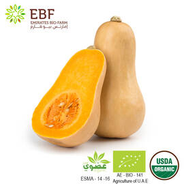 Organic Butternut - 1Pc